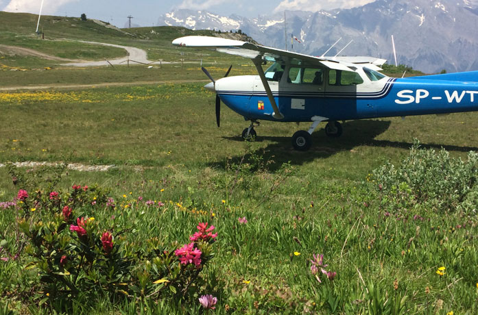 Alpenrosen bei La Croix de Coeur